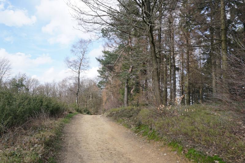 Der Hermannsweg am Leberblümchenweg in Amshausen