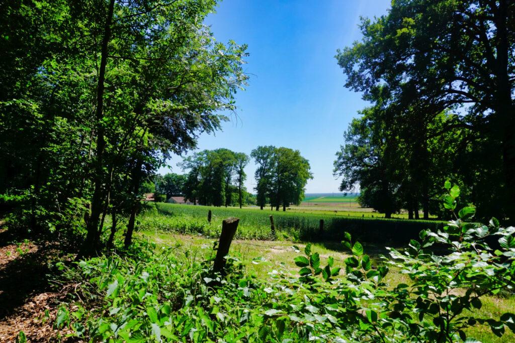 An Wiesen und Feldern vorbei