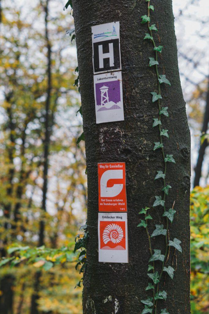 Wanderwegbeschilderung auf dem Luisenturmweg