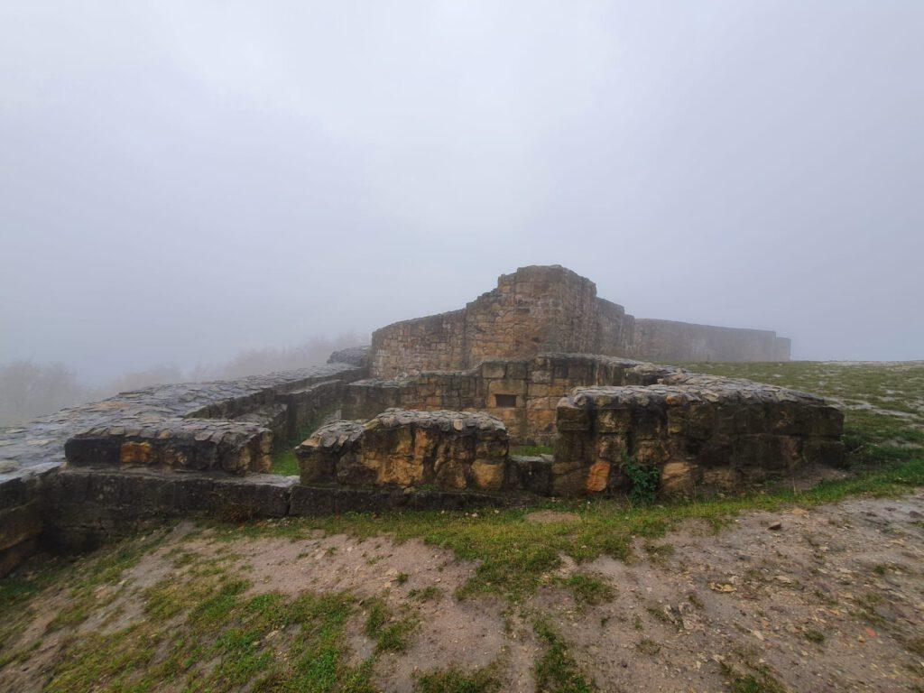 Die freigelegte Ruine Falkenburg